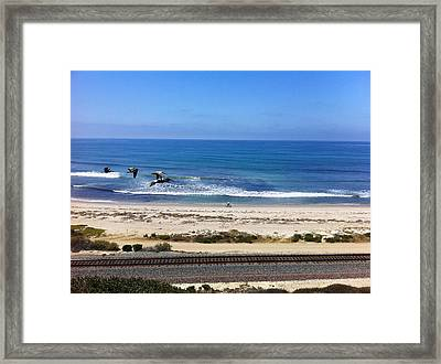 Pelicans And Rider Framed Print