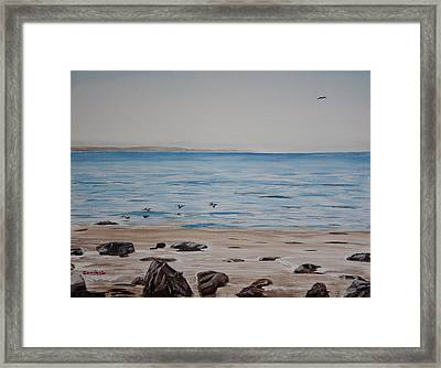 Pelicans At El Capitan Framed Print