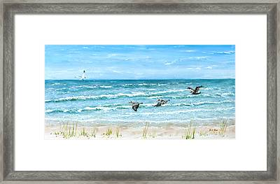 Pelicans On Crescent Beach Framed Print by Bruce Alan