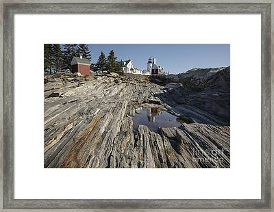 Pemaquid Point Light - Bristol Maine Framed Print by Erin Paul Donovan