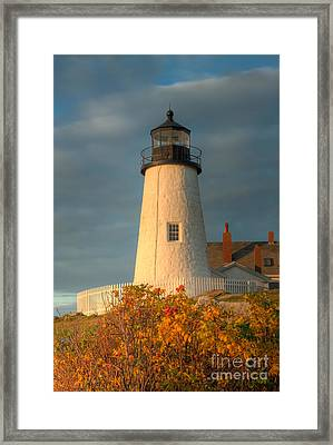 Pemaquid Point Light IIi Framed Print by Clarence Holmes