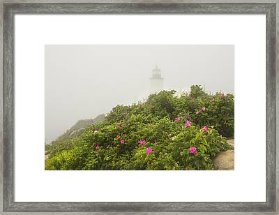Pemaquid Point Lighthouse In Fog On The Maine Coast Framed Print