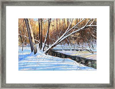 Peme Bon Won River Fly By Framed Print by Larry Seiler