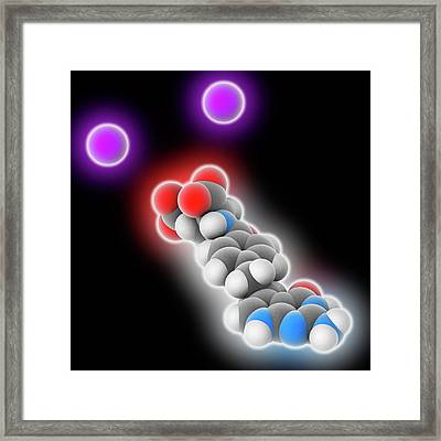 Pemetrexed Disodium Drug Molecule Framed Print by Laguna Design