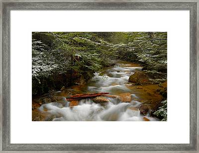 Pemigewasset River In Franconia Notch Framed Print