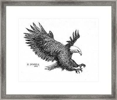 Pen And Ink Bald Eagle Framed Print