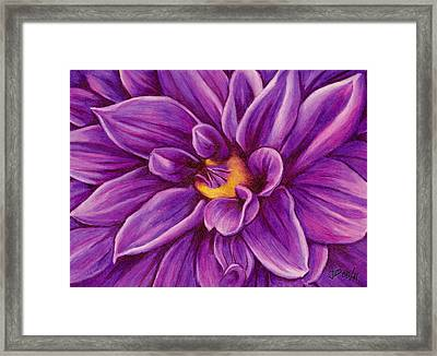 Pencil Dahlia Framed Print
