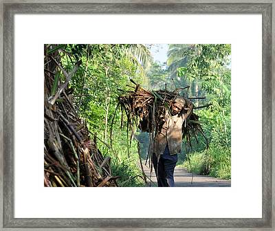 Pengangkut Tebu Framed Print by Achmad Bachtiar