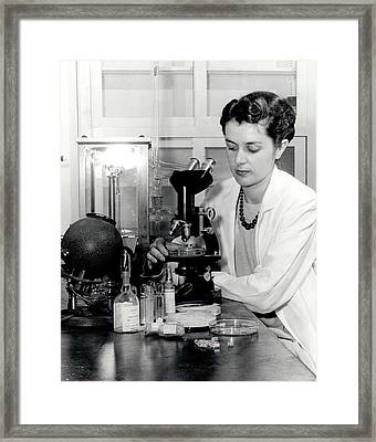 Penicillin Certification Framed Print by Food & Drug Administration