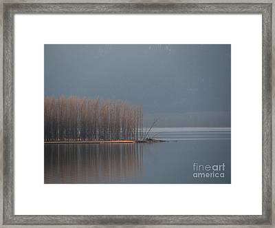 Peninsula Of Trees Framed Print by Leone Lund