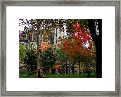 Penn In The Rain Framed Print by Rona Black