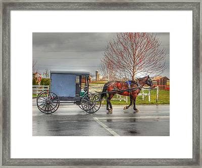 Pennsylvania Amish Framed Print