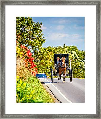 Pennsylvania Amish Framed Print by Steve Harrington