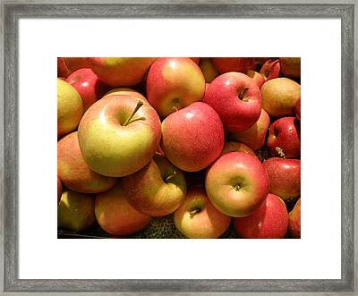 Pennsylvania Apples Framed Print