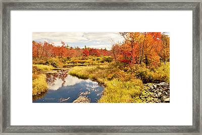 Pennsylvania Autumn Pocono Mountain Stream Framed Print