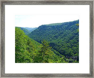 Pennsylvania Grand Canyon 1 Framed Print