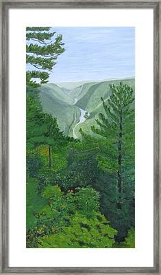 Pennsylvania Grand Canyon Framed Print