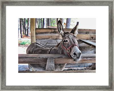 Penny Ann Framed Print by Victor Montgomery