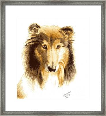 Penny Framed Print by Mary-Anne Harding