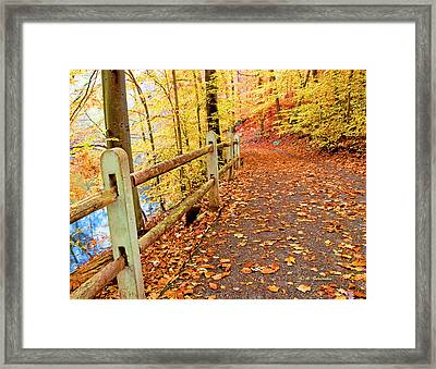 Pennypack Trail Philadelphia Fall Framed Print