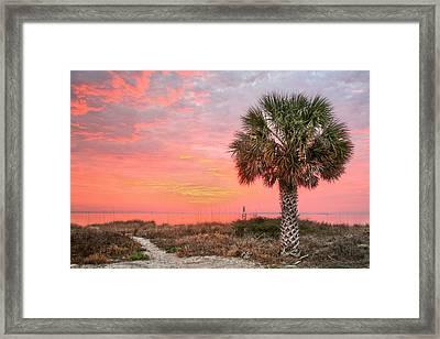 Pensacola Pink Framed Print by JC Findley