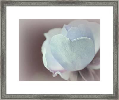 Pensando En Ti Framed Print by The Art Of Marilyn Ridoutt-Greene