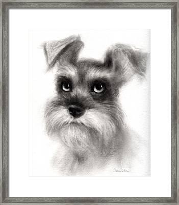 Pensive Schnauzer Dog Painting Framed Print