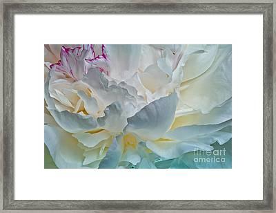 Peonie 2012 Framed Print by Art Barker