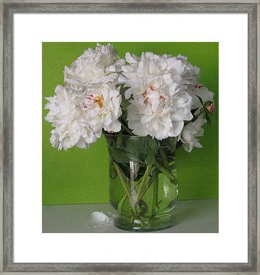 Framed Print featuring the photograph Peonies 2 by Margaret Newcomb