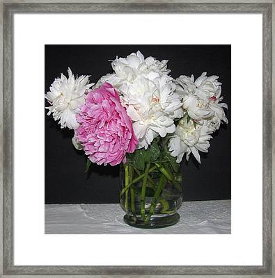 Framed Print featuring the photograph Peonies Bouquet 4 by Margaret Newcomb