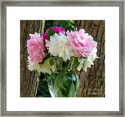 Peonies Framed Print by France Laliberte