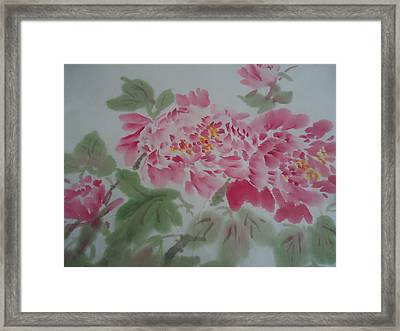 Peony 1 Framed Print by Dongling Sun