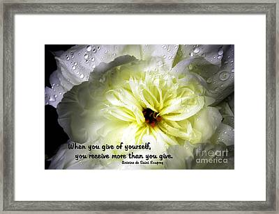 Peony After The Rain Framed Print by Marilyn Carlyle Greiner