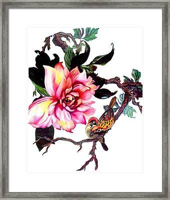 Peony And Birds Framed Print