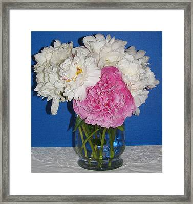 Framed Print featuring the photograph Peony Bouquet 7 by Margaret Newcomb