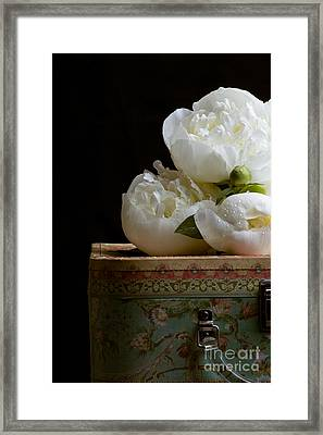 Peony Flowers On Old Hat Box Framed Print