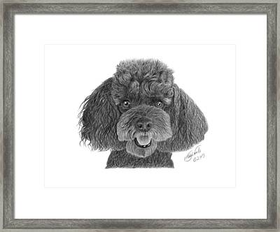 Framed Print featuring the drawing Pepper - 020 by Abbey Noelle