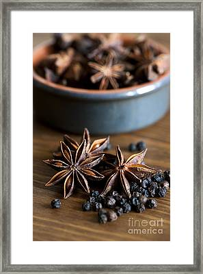 Pepper And Spice Framed Print