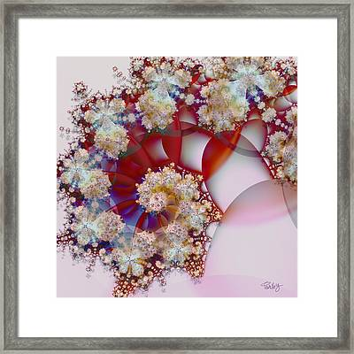 Peppermint Framed Print by Jim Pavelle