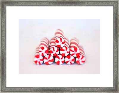 Peppermint Twist - Candy Canes Framed Print by Kim Hojnacki