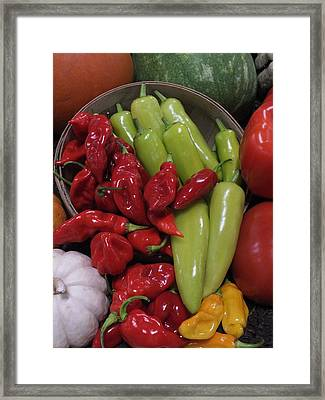 Peppers Etc. Framed Print by Christina Shaskus