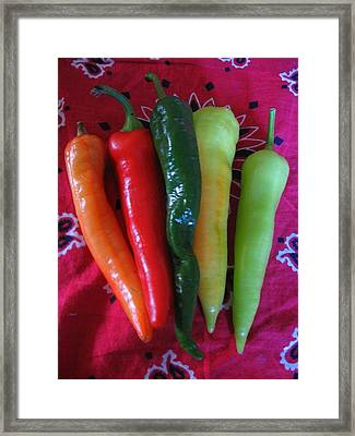 Framed Print featuring the photograph Peppers On Red Bandana by Deb Martin-Webster