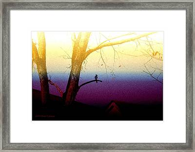 Perched On A Branch Framed Print