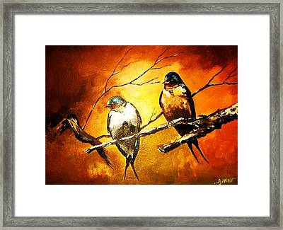 Perched Swallows Framed Print