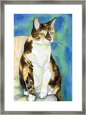 Perched Tabby Cat Framed Print by Cherilynn Wood