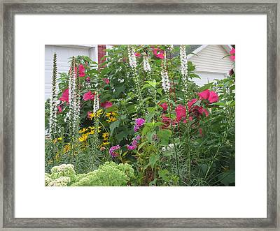 Framed Print featuring the photograph Perennial Garden 1 by Margaret Newcomb