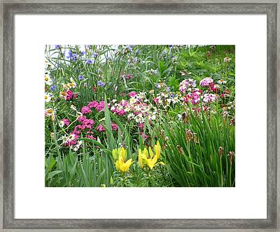 Framed Print featuring the photograph Perennial Garden 2 by Margaret Newcomb