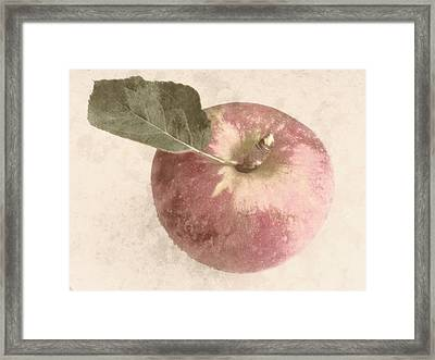 Perfect Apple Framed Print