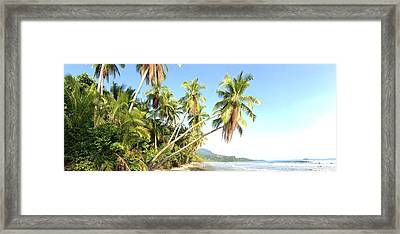 Perfect Beach Framed Print by Tropigallery -