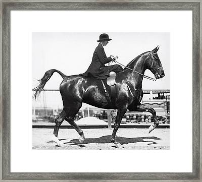 Perfect Equine Form Framed Print by Underwood Archives